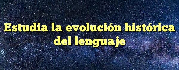 Estudia la evolución histórica del lenguaje